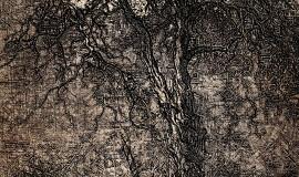 Дмитрий Плавинский. Дерево с луной