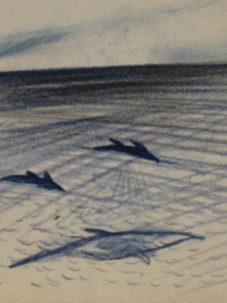 Нисский Георгий. Дельфины.
